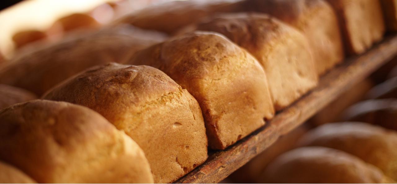 パンの写真1